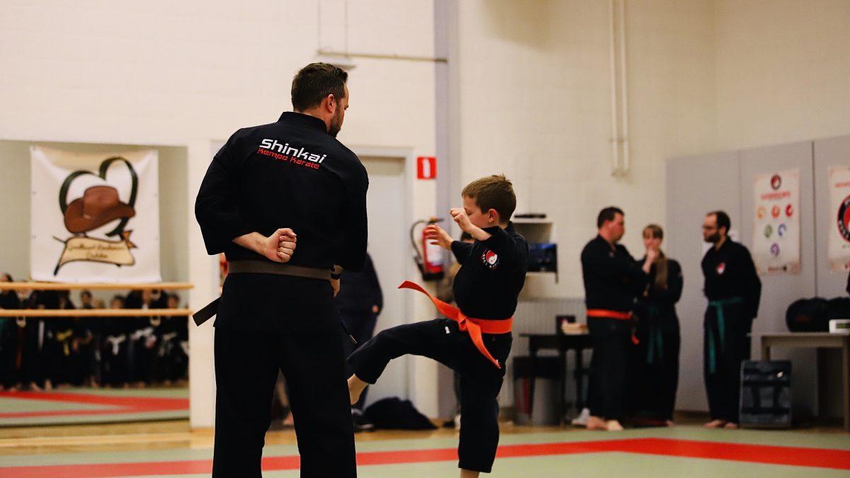 Shinkai Kempo Karate